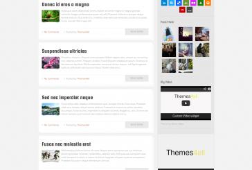 Raibon premium responsivní blogová šablona od Themes4all.com