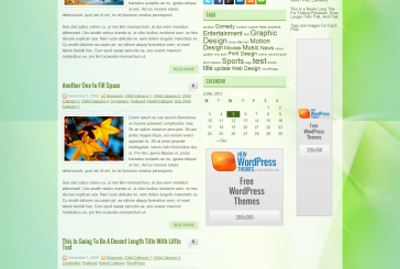 Anolis free WordPress od NewWordPress themes