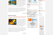 NewsStream free WordPress šablona s českým překladem