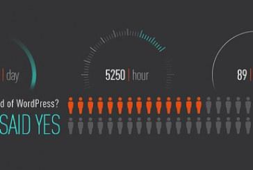State of WordPress infografika