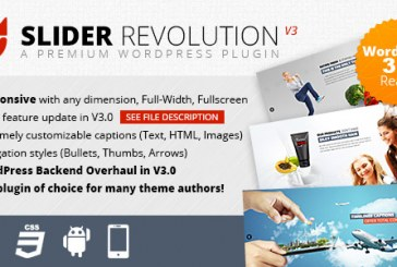 WordPress Revolution slider plugin video návod