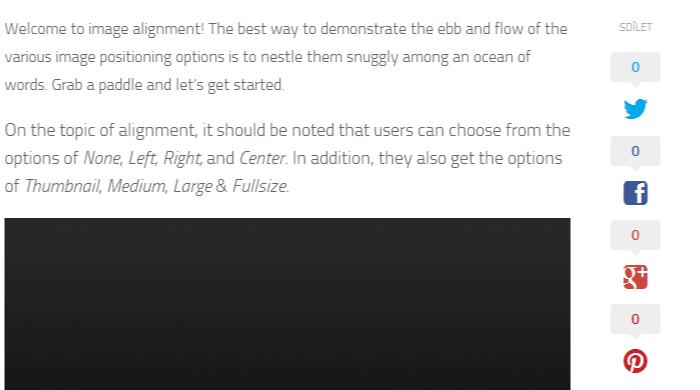 Markup  Image Alignment - WordPress test (1)