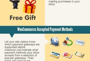 10 top Woocommerce pluginů infografika