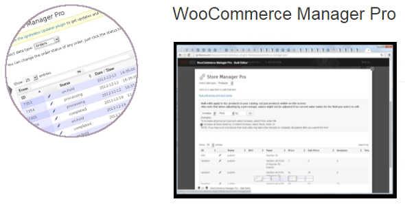 9.8. WooCommerce Manager Pro