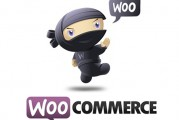 SyntaxError: Unexpected token < ve WooCommerce 2.4.6