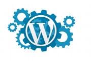WordPress snippet – Kam s ním?
